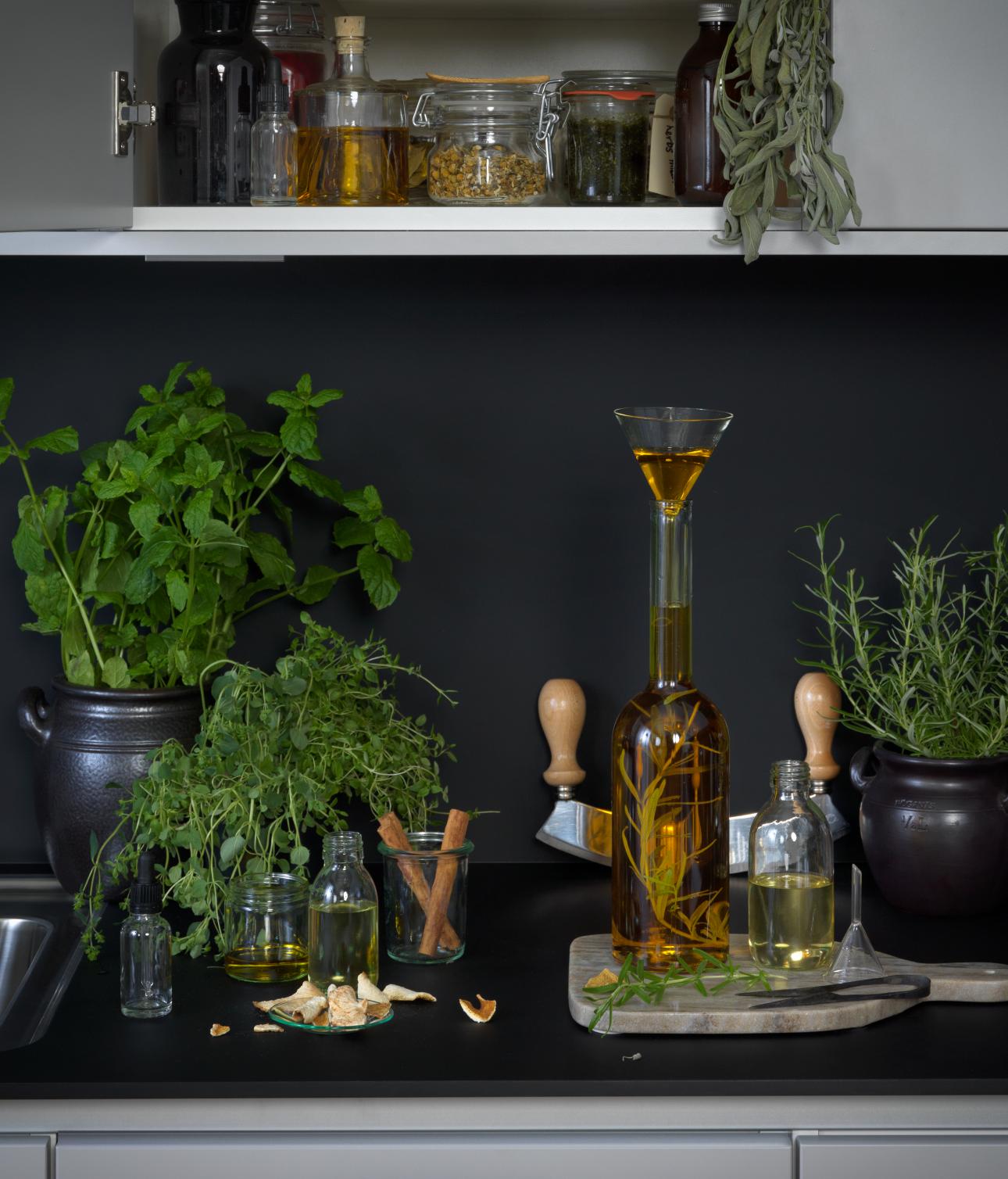 Küchenpflanzen I ewe Magazin I ewe Küchen